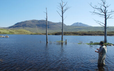 Trout Fishing in Assynt – an essential guide