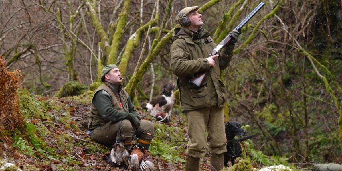 skjuter i en skotsk skog med hund