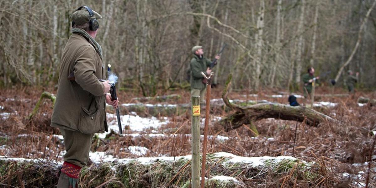 vapen på pinnar Skottland skjuter