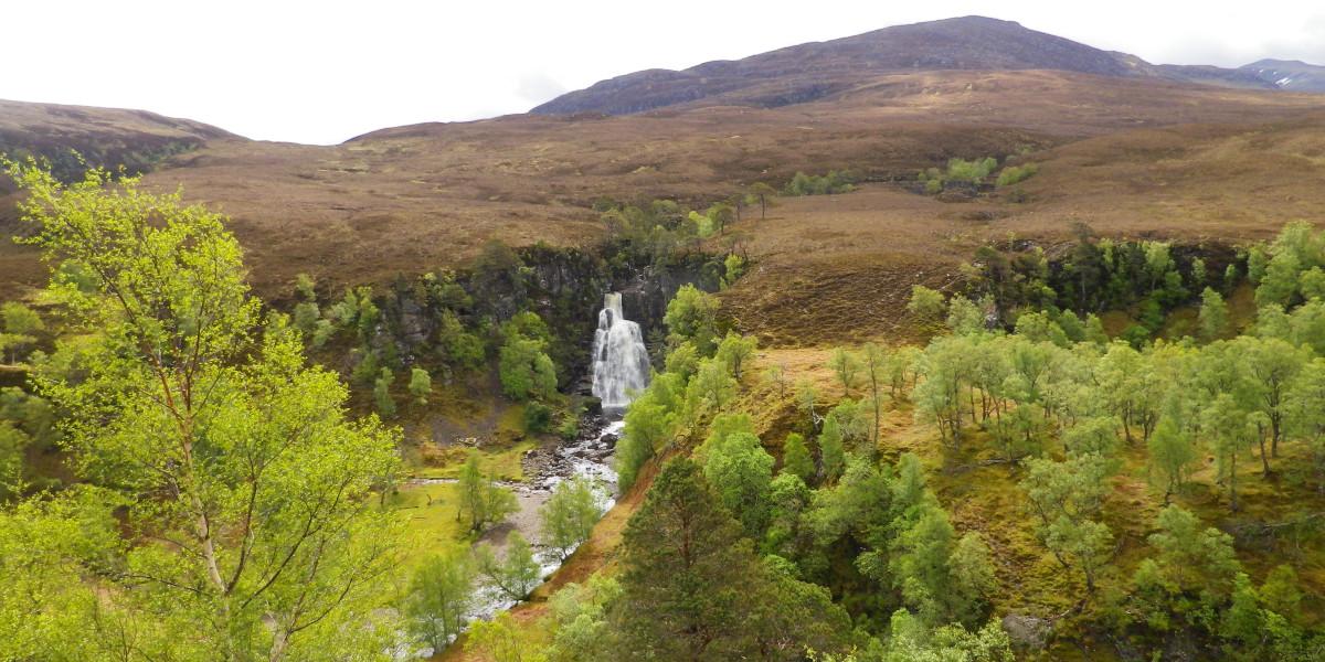 schottischer lachsfischerfluss mit wasserfall und bäumen