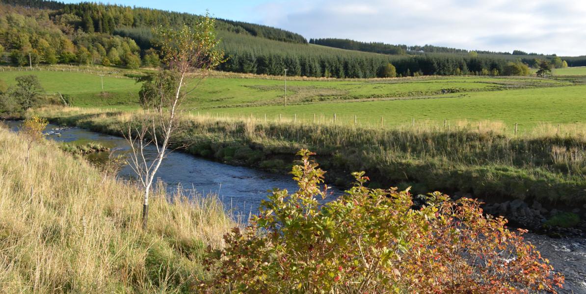 Fluss im Sonnenlicht fließt durch Ackerland Edinglassie Estate