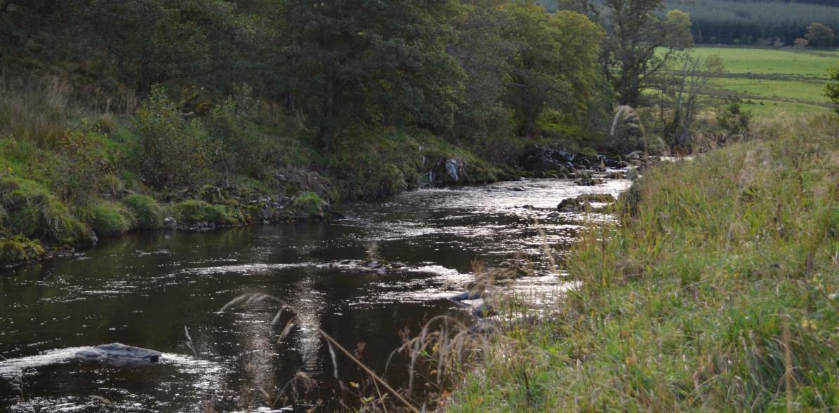Fluss Edinglassie Estate