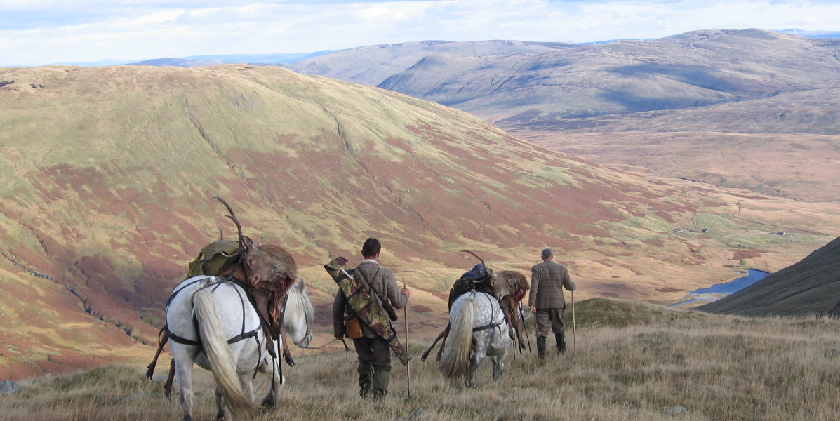 two deer stalkers in Scottish hills with hill ponies carrying stags