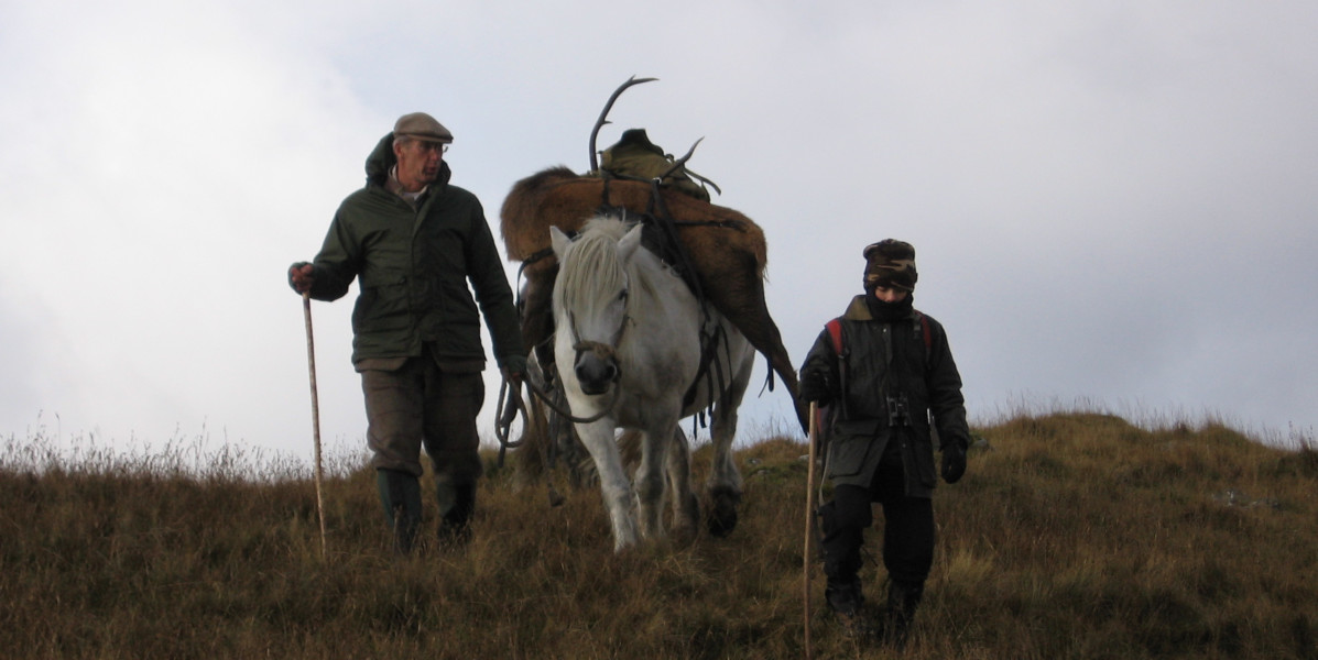 Deer stalkers with Scottish hill pony carrying a stag