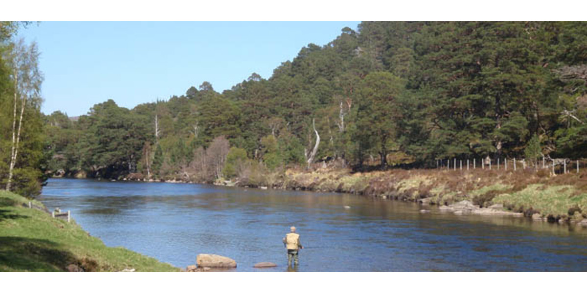 Invercauld_estate_angler_wading_river_salmon_fishing_scotland