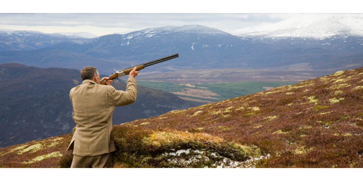 Invercauld_Estate_man_in_tweed_shooting_grouse_from_grouse_butt