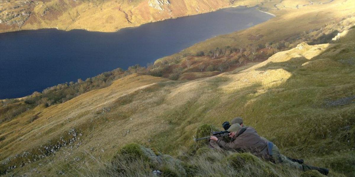 Skotska höglandsstalkare som är klara att ta ett skott på berget