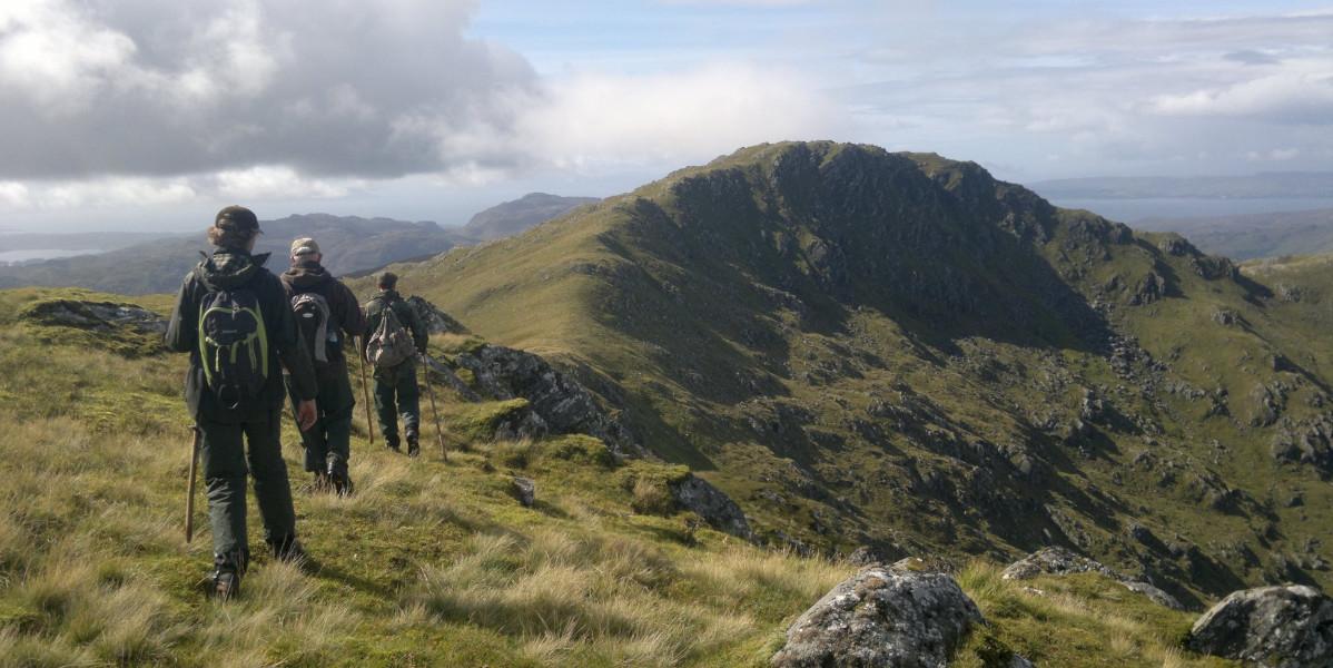 Skotska höglandshjortstalkers som korsar en ås