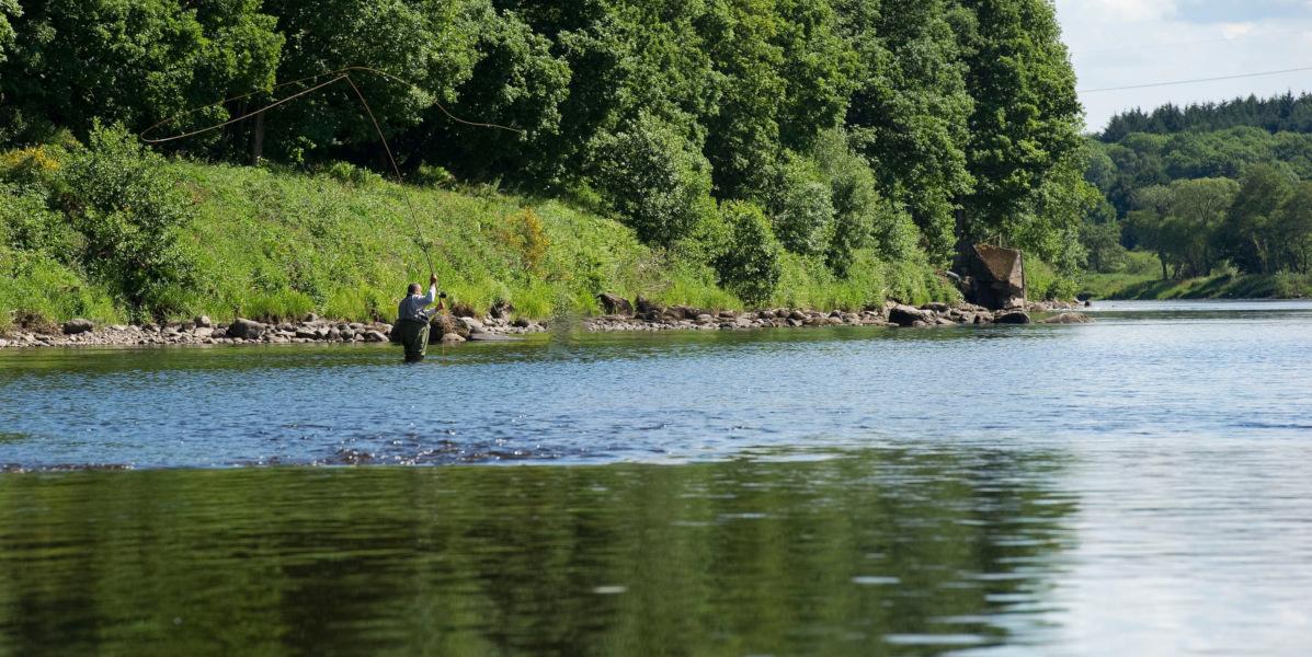 Mann Fliegenfischen auf Lachs am Fluss Tay Schottland