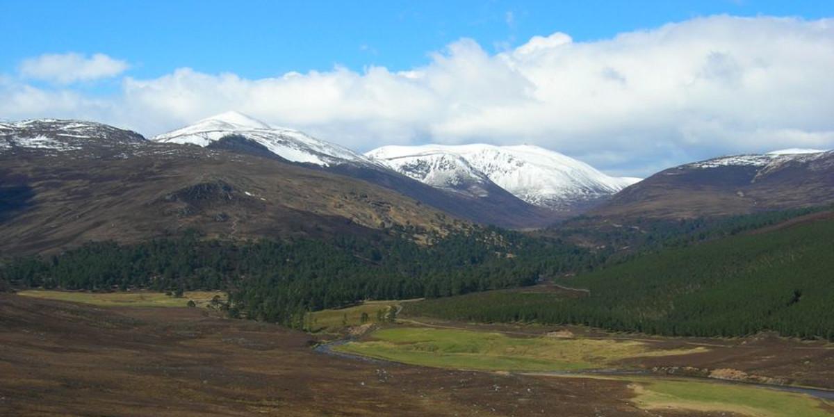 Skotsk fastighetssikt dalbevuxen sluttning och snöiga bergstoppar