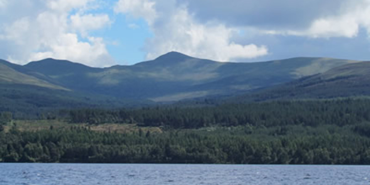 Scottish mountain with trees beside loch
