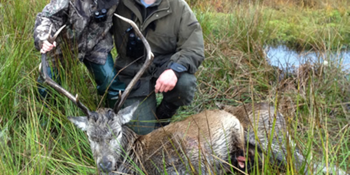 two stalkers with red deer stag