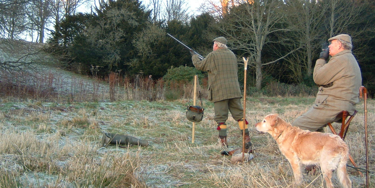 gun on peg with man resting on shooting stick with blond labrador