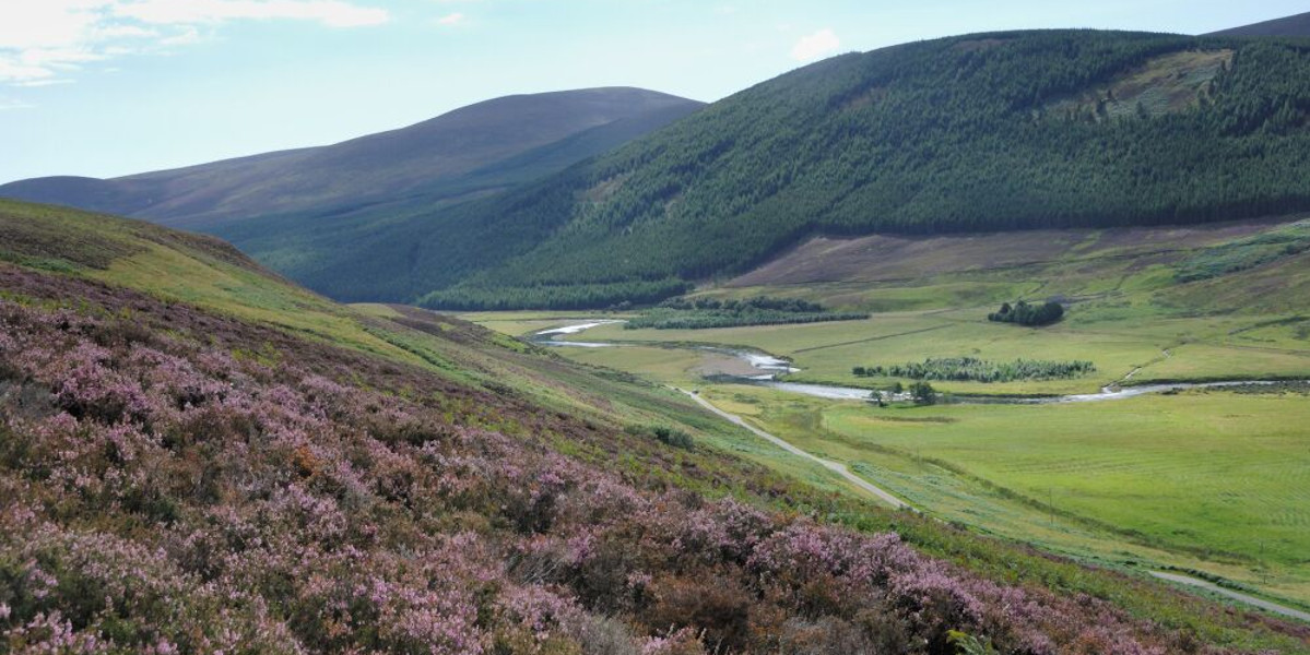 Schottisches Glen mit Fluss und Heide