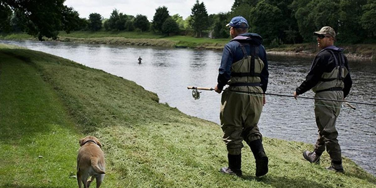 2 fly fishermen and yellow labrador walking along riverbank