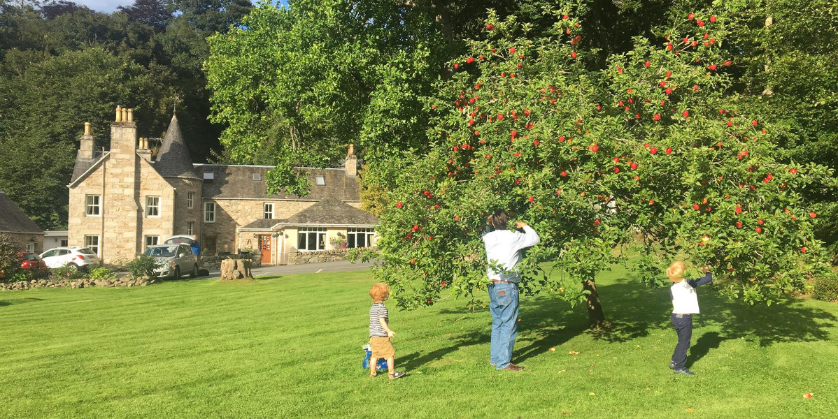 man and child on lawn with apple tree