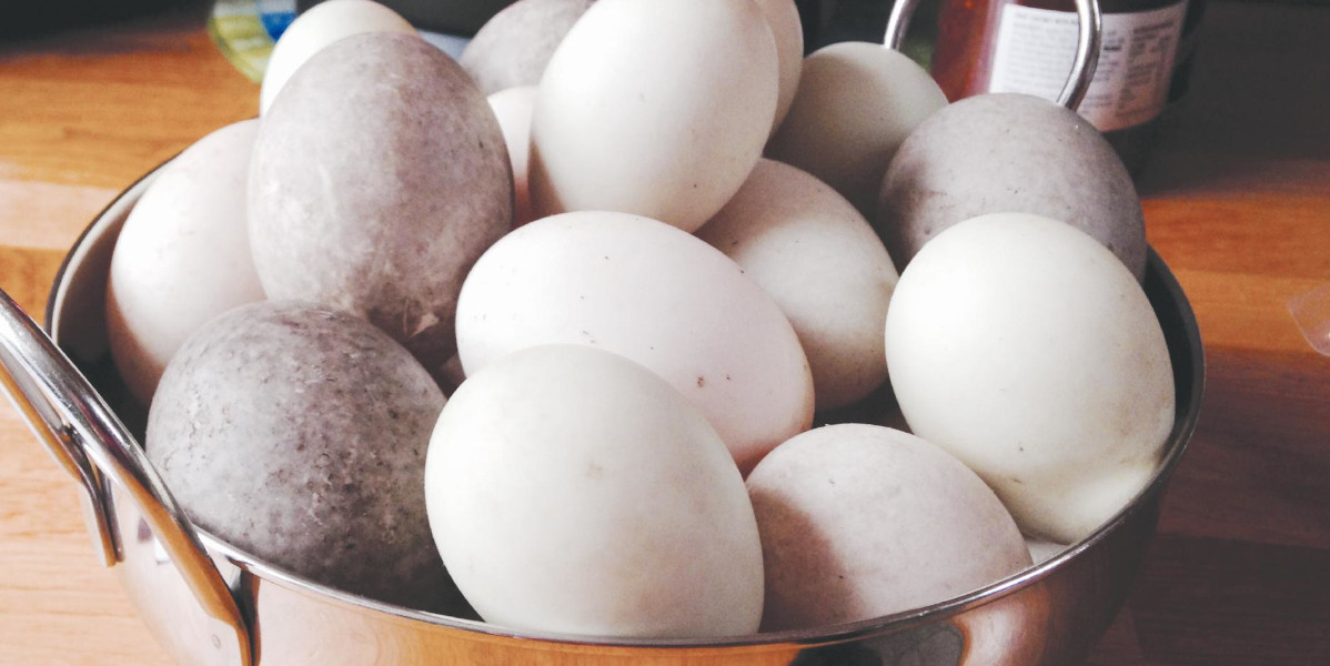 eggs in a stainless steel bowl