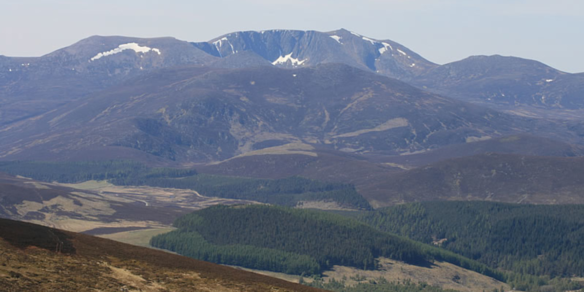 Scottish mountain with snow heather and trees