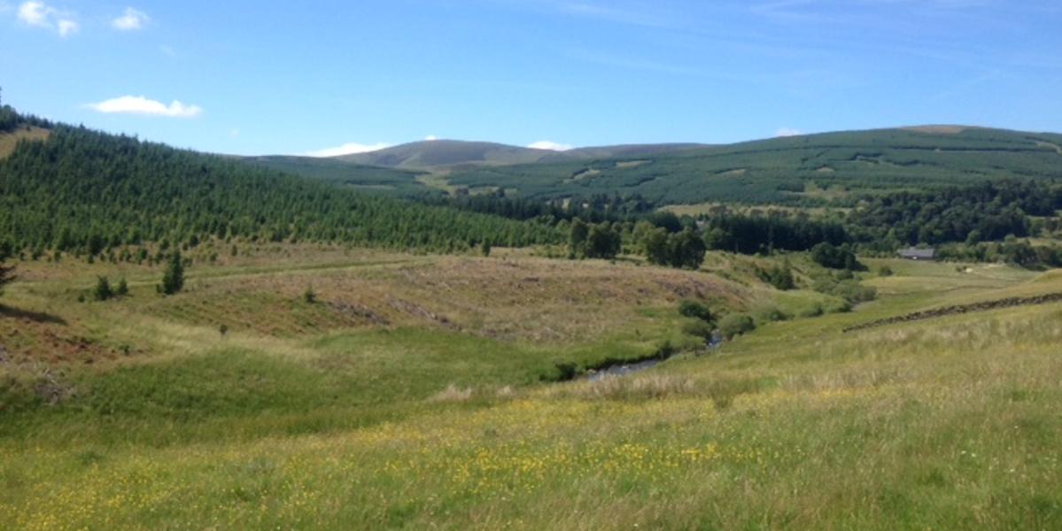 Schottische Grenzhügel mit Feldern im Vordergrund