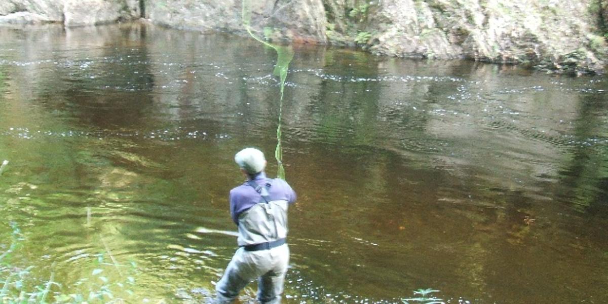 angler fly fishing for salmon on river