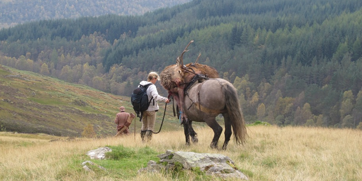 hill pony with stag and handler