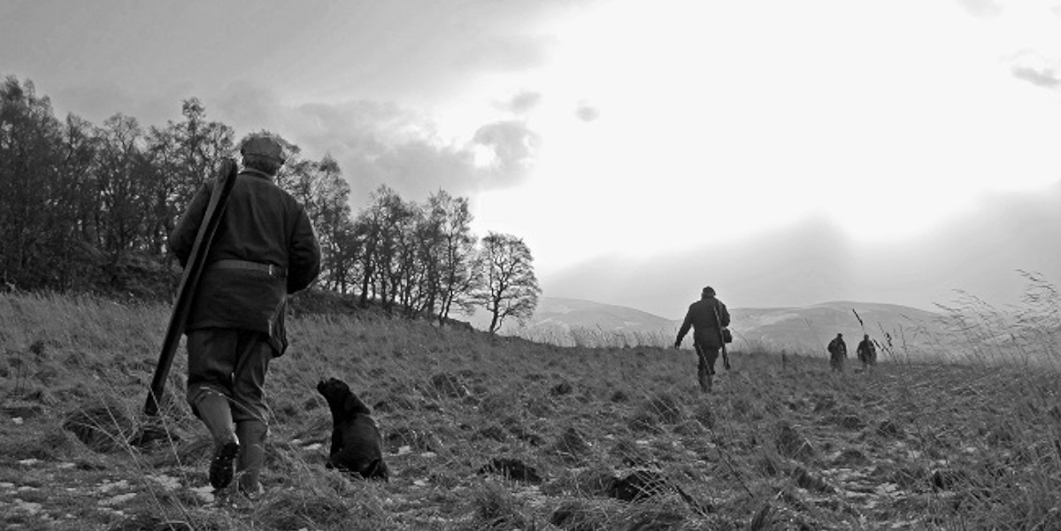 armes à feu et chiens marchant vers des chevilles en noir et blanc