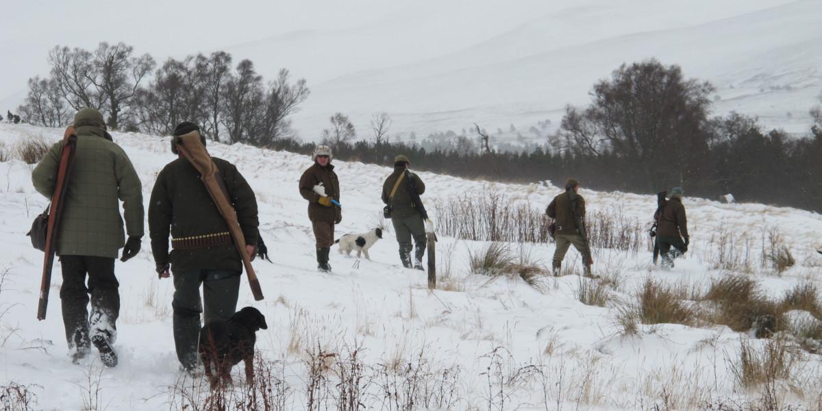 canons marchant vers des piquets dans la neige