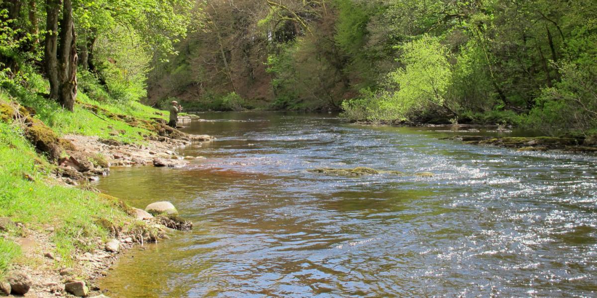 Pêcheur écossais de ressort sur la rivière