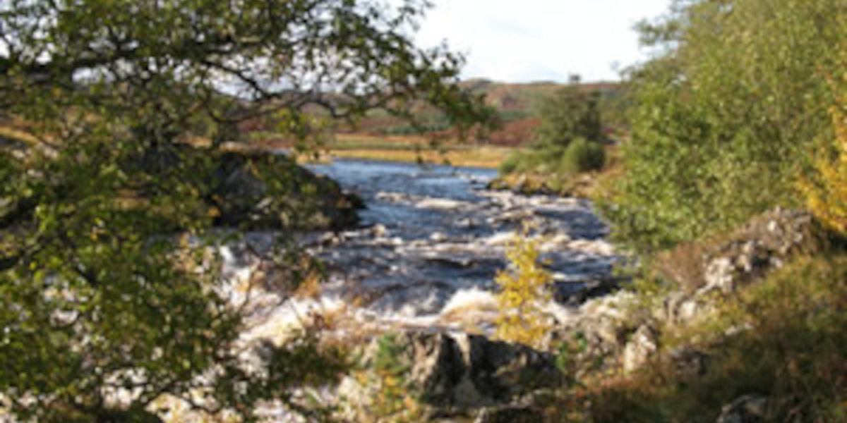 cascade de la rivière gaur