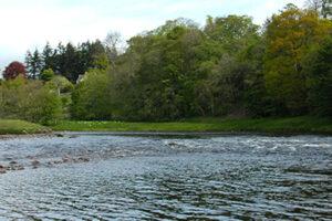 Scottish salmon river