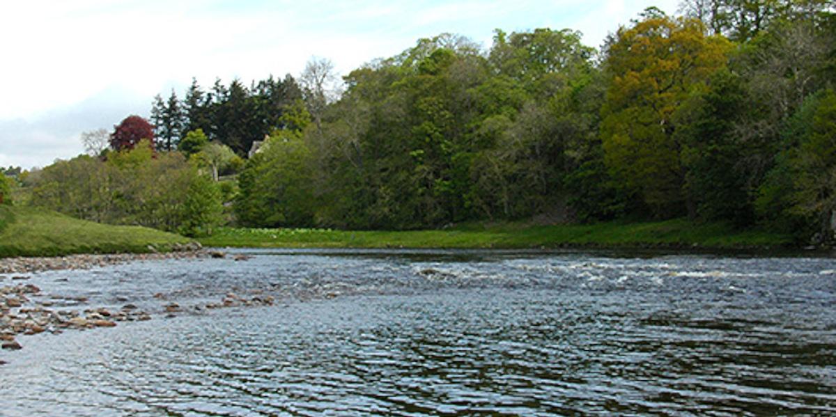 Schottischer Lachsfluss