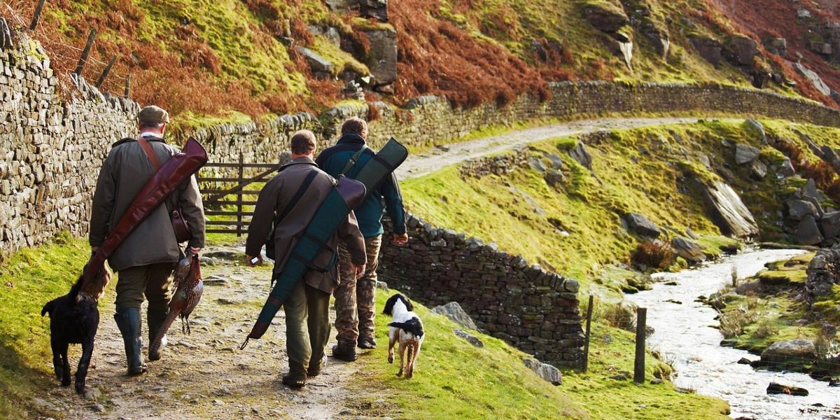 män med hundar och hagelgevär som går längs en stig