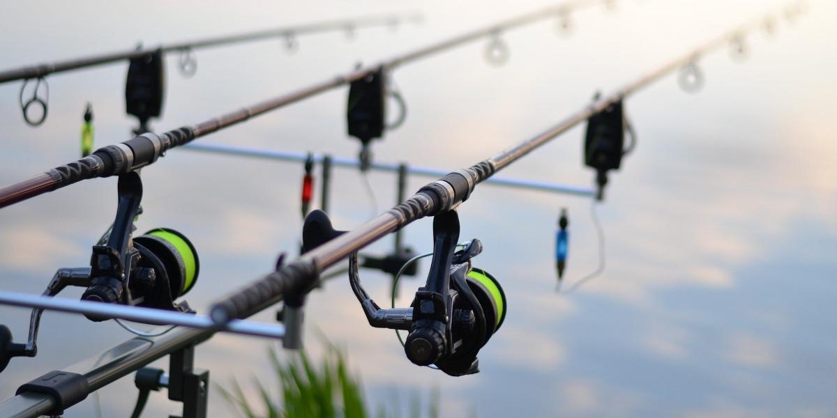 trois cannes à pêche avec alarmes carpe de pêche au gros
