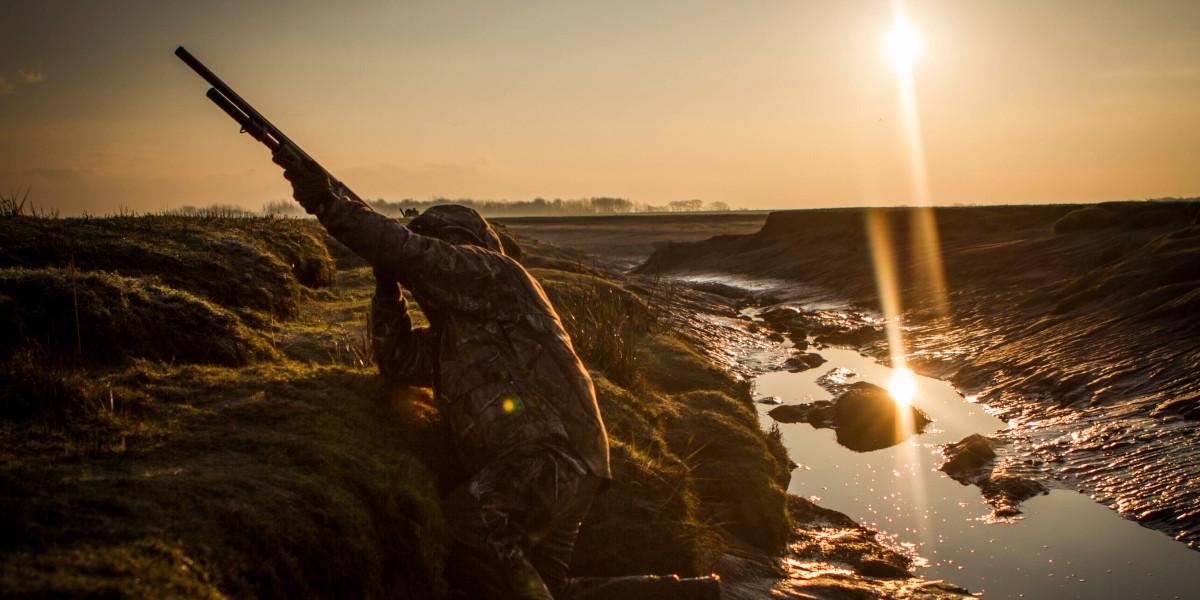 Wildvögel auf der Mündung bei Sonnenuntergang