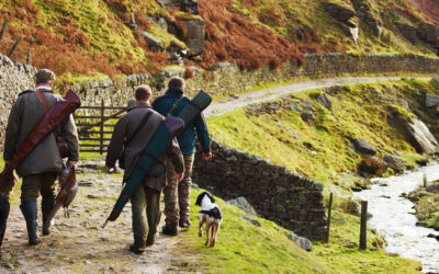 Webinar – VisitScotland 'Country Sports Tourism Restart Fund'