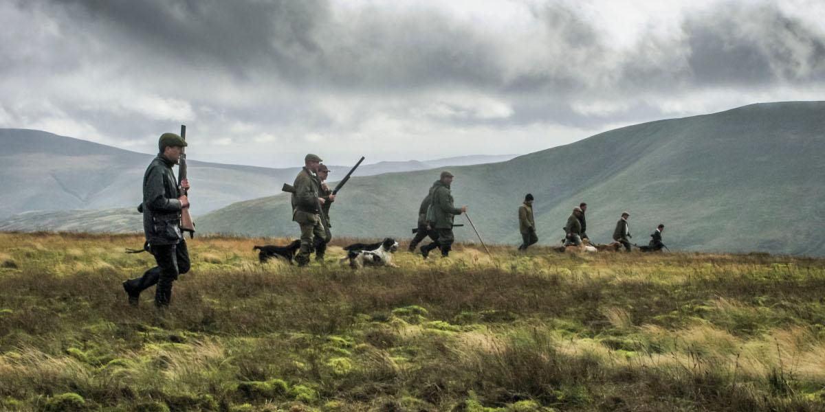 män och hundar som jagar på sluttningar