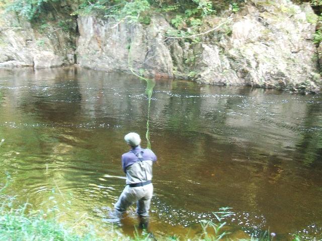 Lax- och öringsfiske, floden Lyon, Perthshire