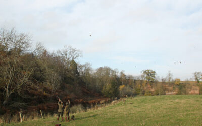 Clay to Game Training Course, Scottish Borders