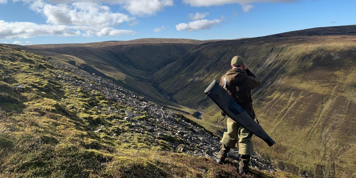 stalker surveying the hillside