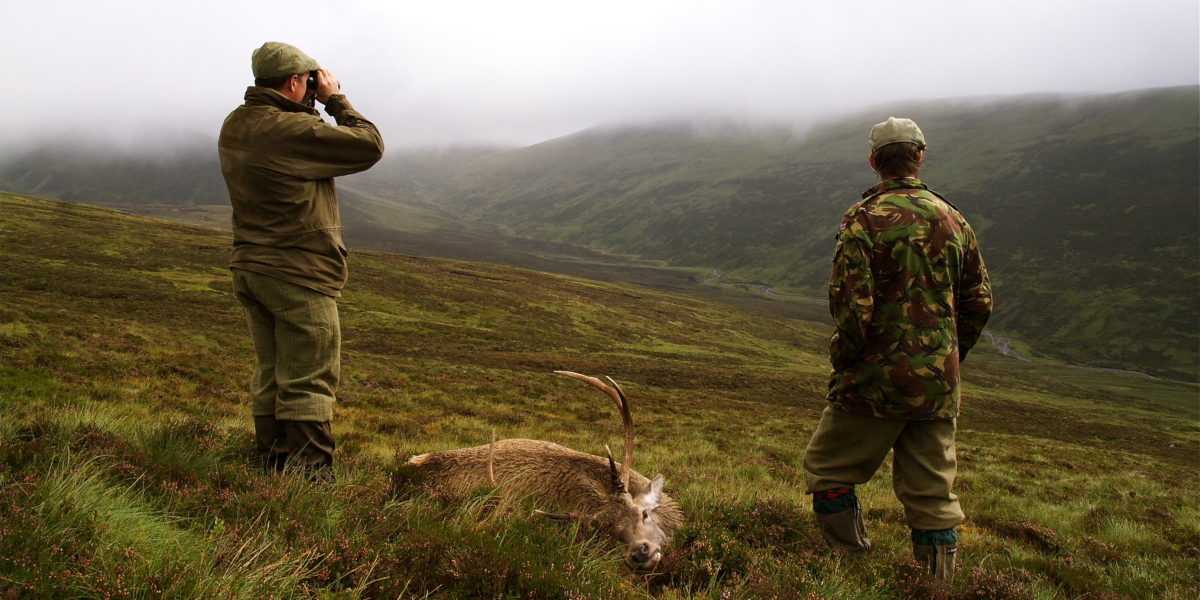 Two stalkers with a stag carcass on a misty hillside